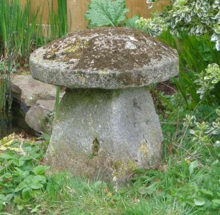 2017-05-04 Staddle stone garden mushroom D-450